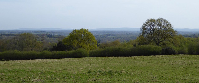 Panorama just after lunch Buxted Circular walk