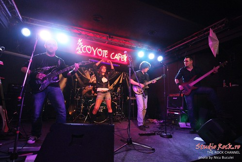 Shifting Sands live at Coyote Cafe   by nicubunu.photo