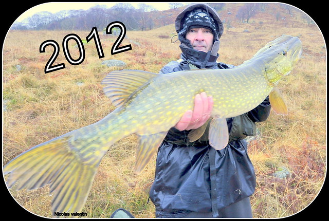 Happy new 2012