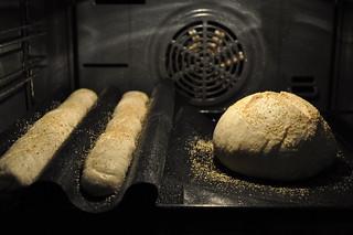 Cuban Bread | by - Caillean -