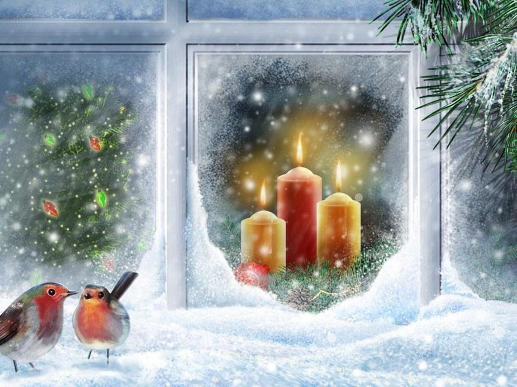 Robin At Christmas Window Wallpaper Free Christmas Scree