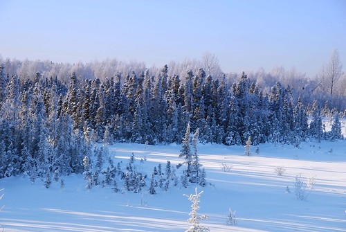 snow alaska day anchorage regionwide fleursetpaysages