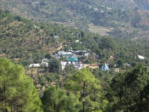india village ilp himalayas himachalpradesh rewalsar theindiatree