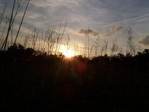 sunset orange sun house reed nature beautiful afternoon kodak fields z650 reedfields