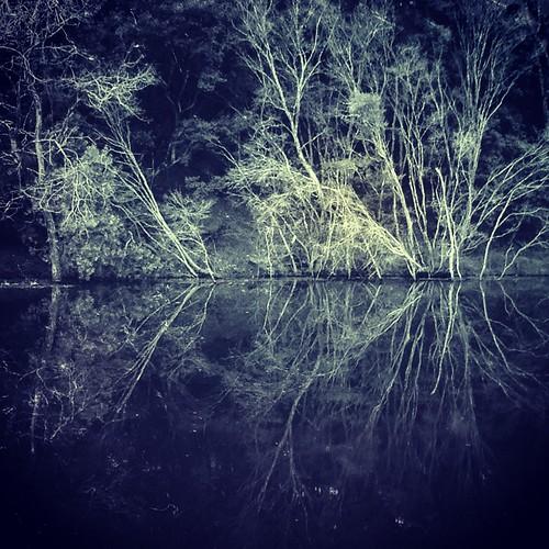 trees reflection water dam pranaridge