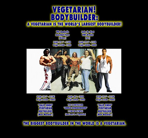Worlds Biggest Bodybuilder Vegetarian is Largest vs Mr Olympia Arnold Schwarzenegger Muscle - 8