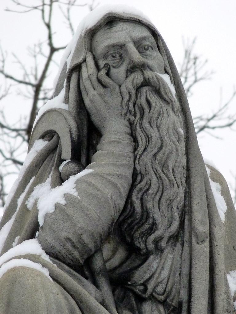 Suburban druid in the snow
