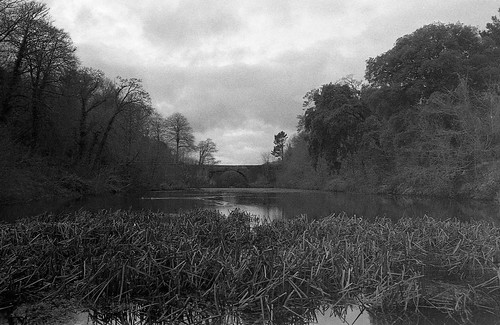 Stackpole | by [Scott]