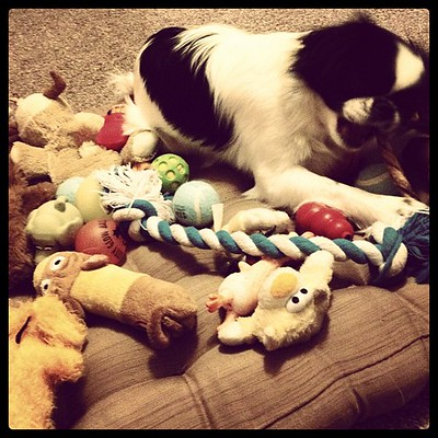 Oliver and All of His Toys