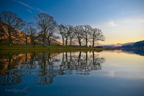 Lake and trees | by Dave Wilson Cumbria