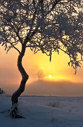 winter sun sunrise finland landscape flickrsfinestimages1 flickrsfinestimages2 flickrsfinestimages3