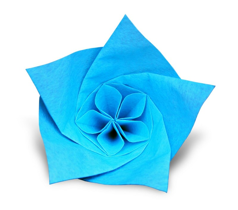 Flower (Evan Zodl)