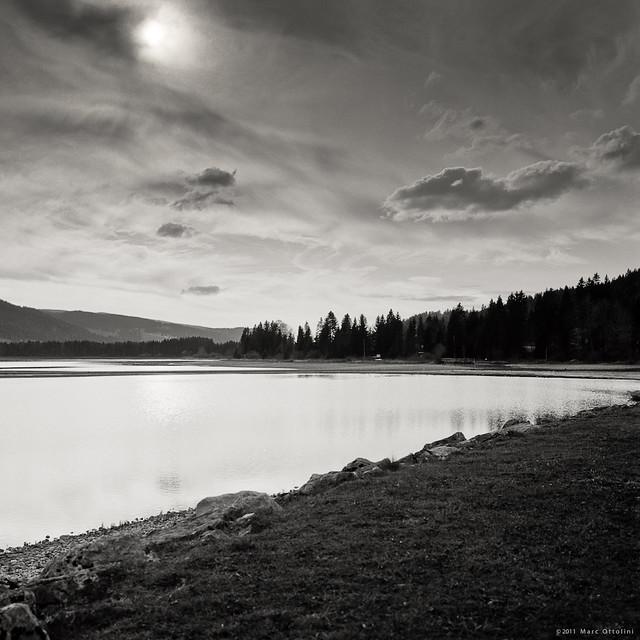 Water Reflection II