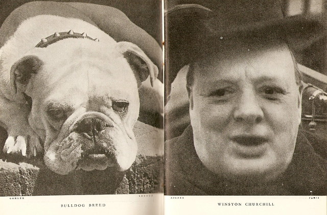 'Lilliput' comparison (1): Oct. 1937