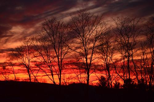 Shooting Sunset