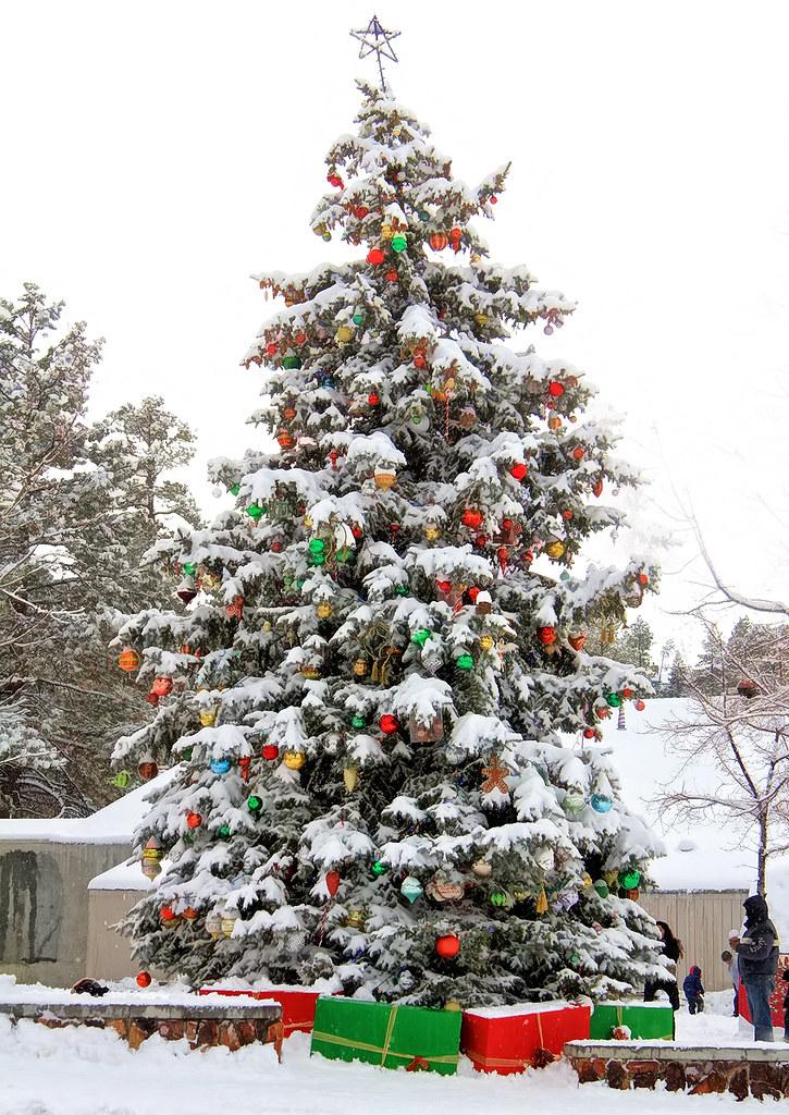 Big Bear Christmas.The Big Christmas Tree The Big Christmas Tree In Big Bear