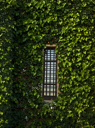 green window | by Uge Ferradas