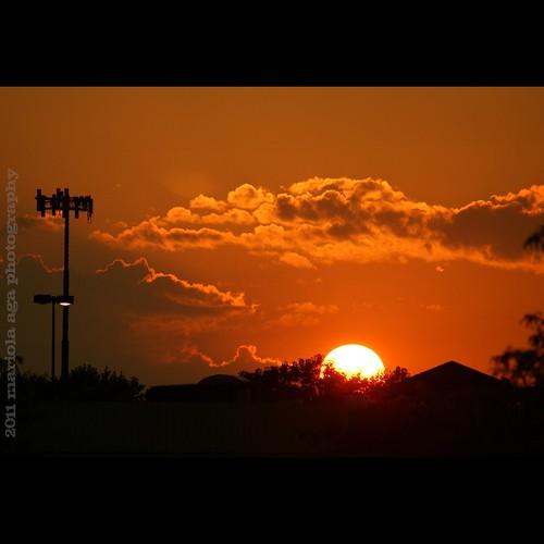 trees sunset sky sun silhouette clouds buildings square evening roofs lightings thegalaxy sailsevenseas mygearandme mygearandmepremium mygearandmebronze mygearandmesilver mygearandmegold mygearandmeplatinum