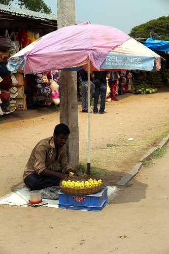 Amla Seller in Srirangapatna, Karnataka, India | by Akbar - Web Designer and Freelance Photographer