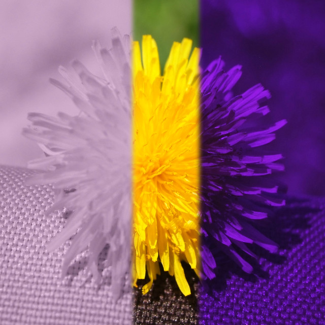 Hyperspectral Dandelion IR-vis-UV
