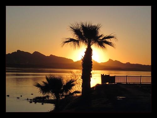 morning arizona sun lake america sunrise az roadtrip crosscountry havasu backlit lakehavasu wow1 wow2 wow3 bfv1 naturebfv1 100commentgroup bbng