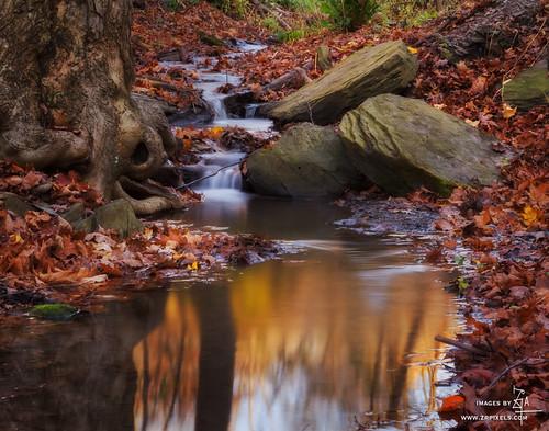 autumn oakland schenleypark autumncolor ortonlight canoneos60d canon24105mmlens luminositymasks