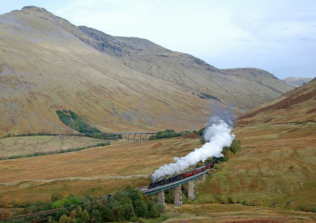 Horseshoe steam 1