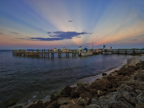 pink blue sunset sky orange seagulls clouds river boats pier dock rocks florida outdoor seagull sebastianriver