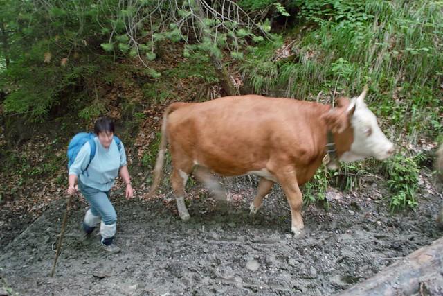 26.06.2009 - Schyniger Platte SDIM0354