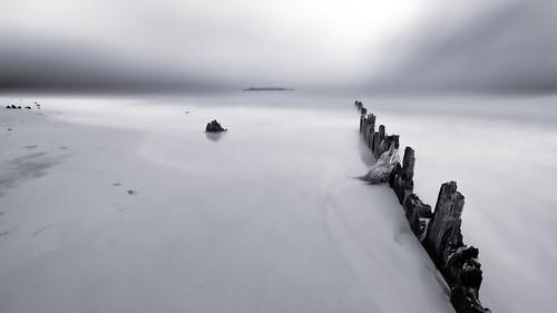ocean sea bw usa white mist black beach monochrome fog photography bay us sand view unitedstates unitedstatesofamerica shoreline surreal grand shore grandview minimalism seashore minimalist sandybeach monomonday skynoir skynoircom