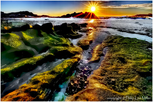 california seascape painterly abstract true landscape nikon sunsets tidepools hdr impressionistic pacificcoast tistheseason pointlobosstatereserve longexpsoures kelpbeds singhrayfilters topazclean d7000 galleryoffantasticshots trueexcellence1 excellence1