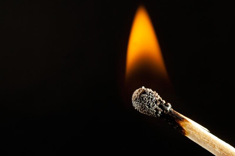 Llama / Flame