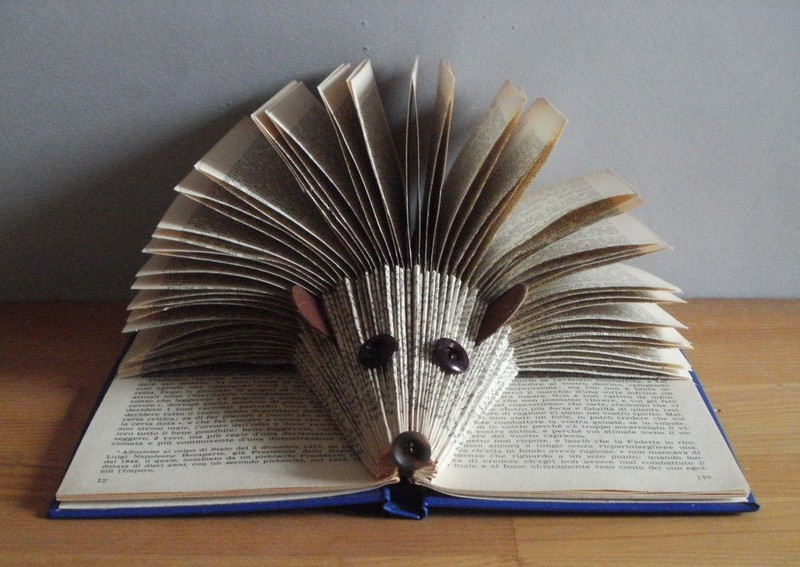 Folded Hedgehog Book