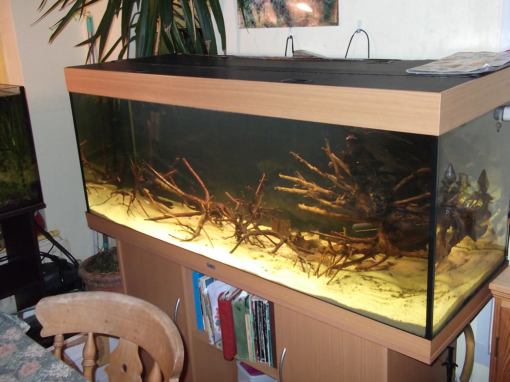 Blackwater biotope
