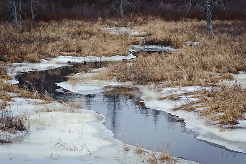 ice maine steuben washingtoncounty weather winter stream cold downeastsunrisetrail usa locationrecorded hiking