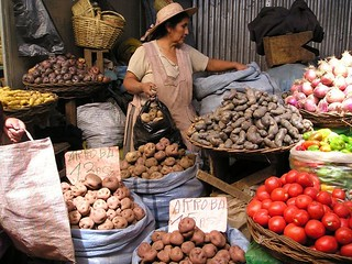 Bolivian saleswoman surrounded by different kinds of potato | by Bioversity International
