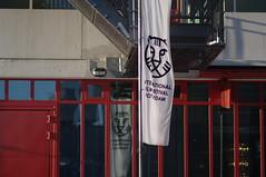 IFFR 2012 banner