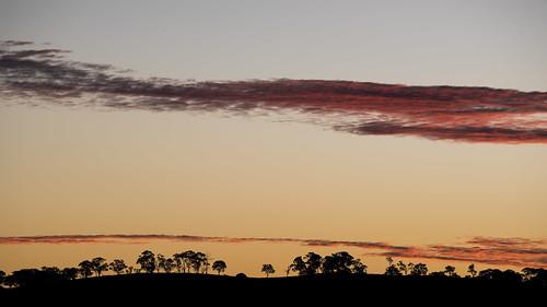 blue autumn trees sunset sky orange black color colour weather silhouette clouds landscape tripod hill newengland australia clear telephoto nsw newsouthwales bluehour goldenhour armidale tamron70300mm nikond750 obrangle