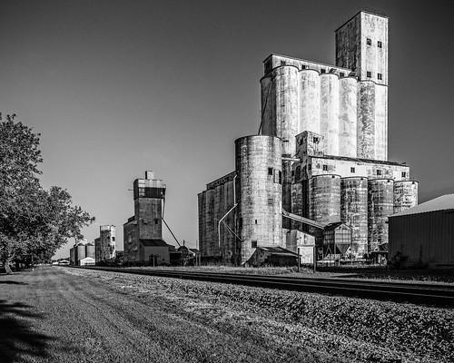 old railroad morning trees blackandwhite bw sunlight monochrome blackwhite rice tracks railway row silo silos