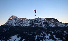 Neunerköpfle Summit Paragliding