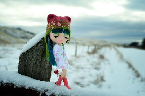 winter snow doll pam blythe eurotrash winterlandscape anniversarydoll okanogan sugarmag princessalamode