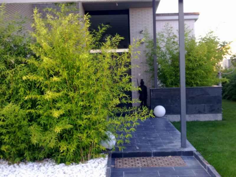 Zona entrada casa jardin soto
