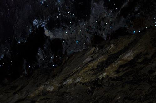 Glowworms | by aemkei