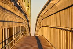 Puente Jacques Cartier