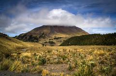 Parc national Pico de Orizaba