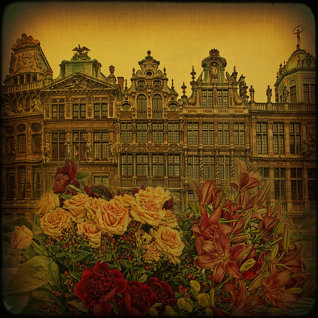 Brussels... Grand-Place and magic flower carpet.