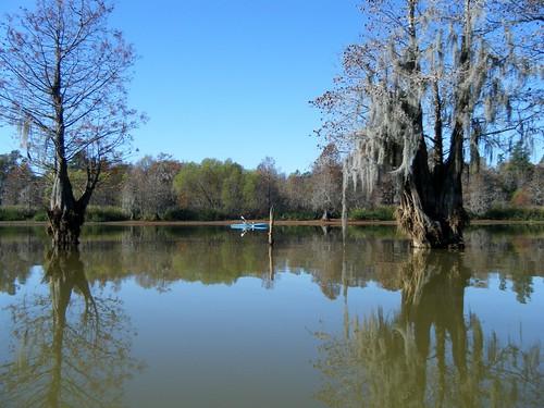 southcarolina kayaking paddling lakemarion lowfallslanding