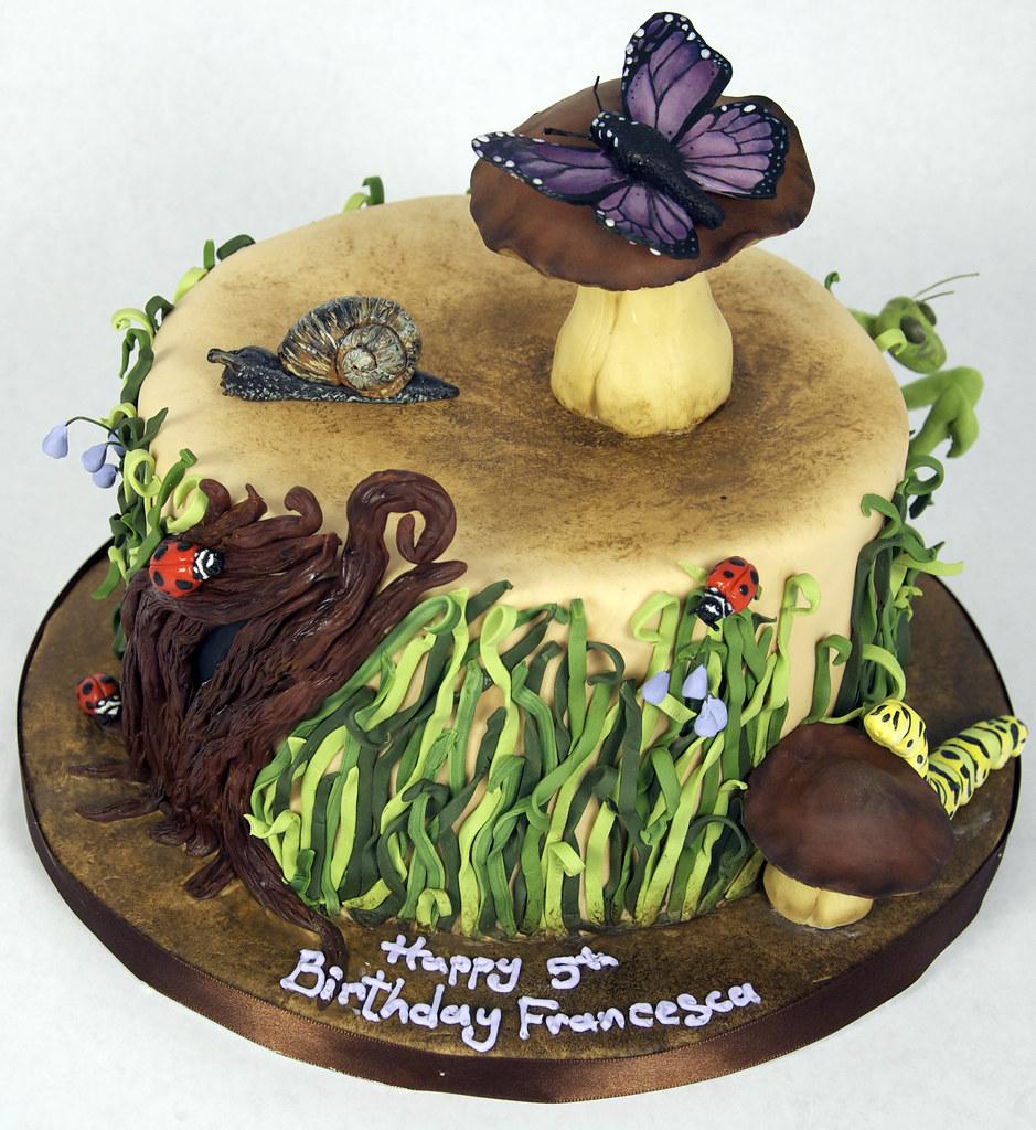 Enjoyable Bc4035 Bug Birthday Cake Toronto An 8 Round 20 Serving Flickr Funny Birthday Cards Online Overcheapnameinfo