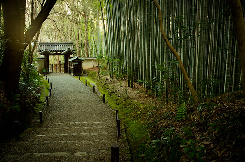 after the gate of the temple is closed (Jizou-in temple, Kyoto) | by Marser