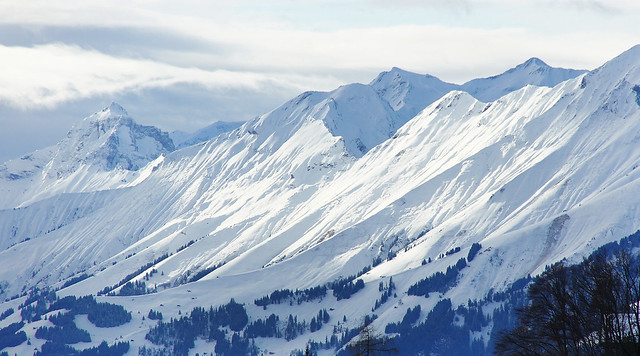 Swiss Alps 003